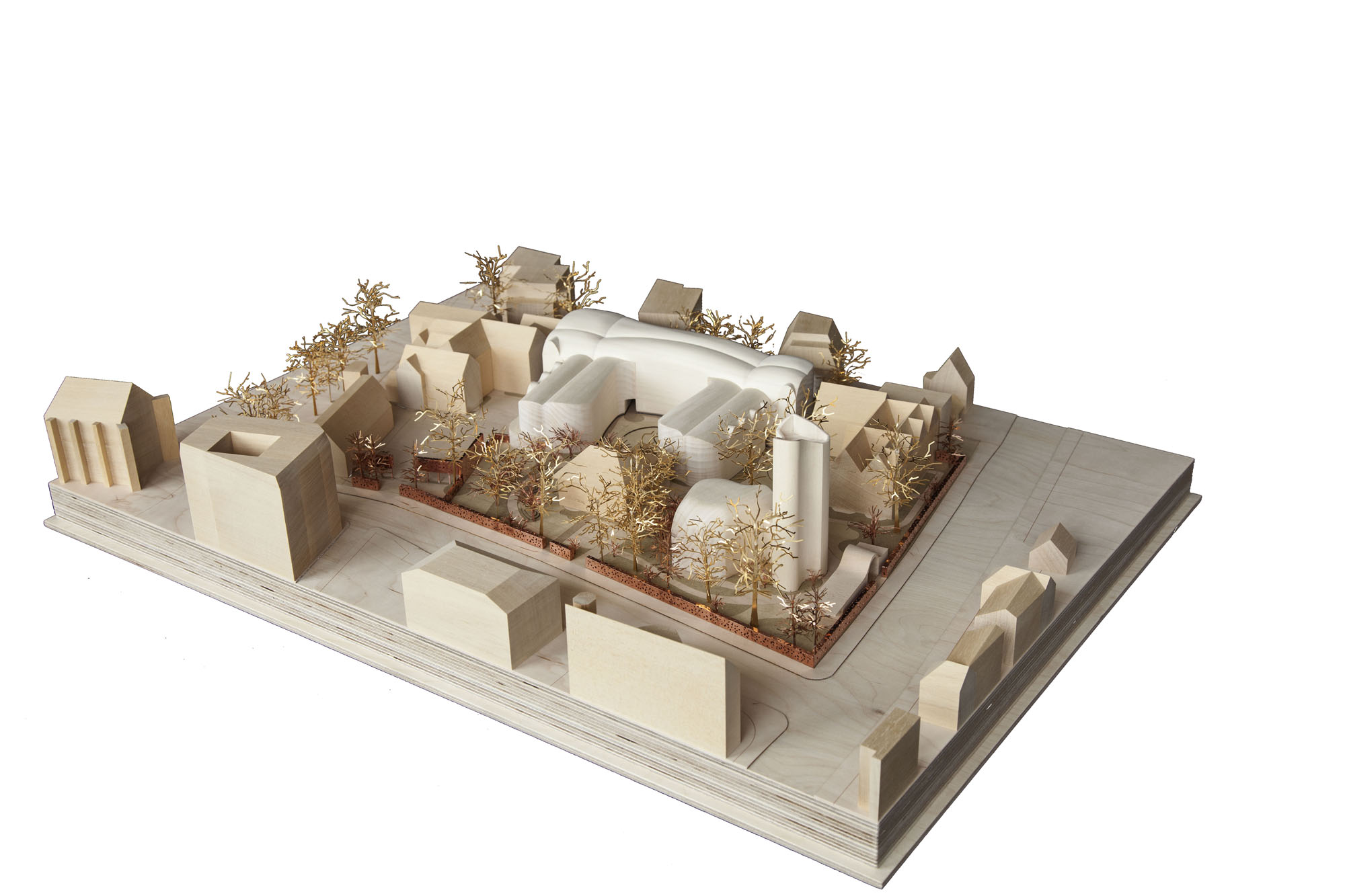 Model of the Development