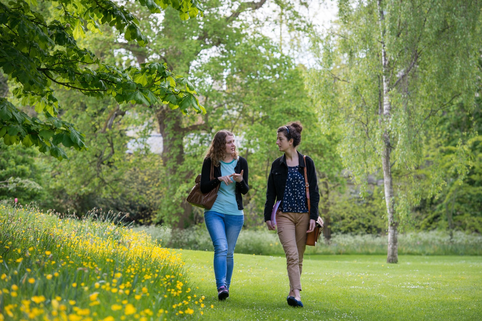Students walking in the gardens