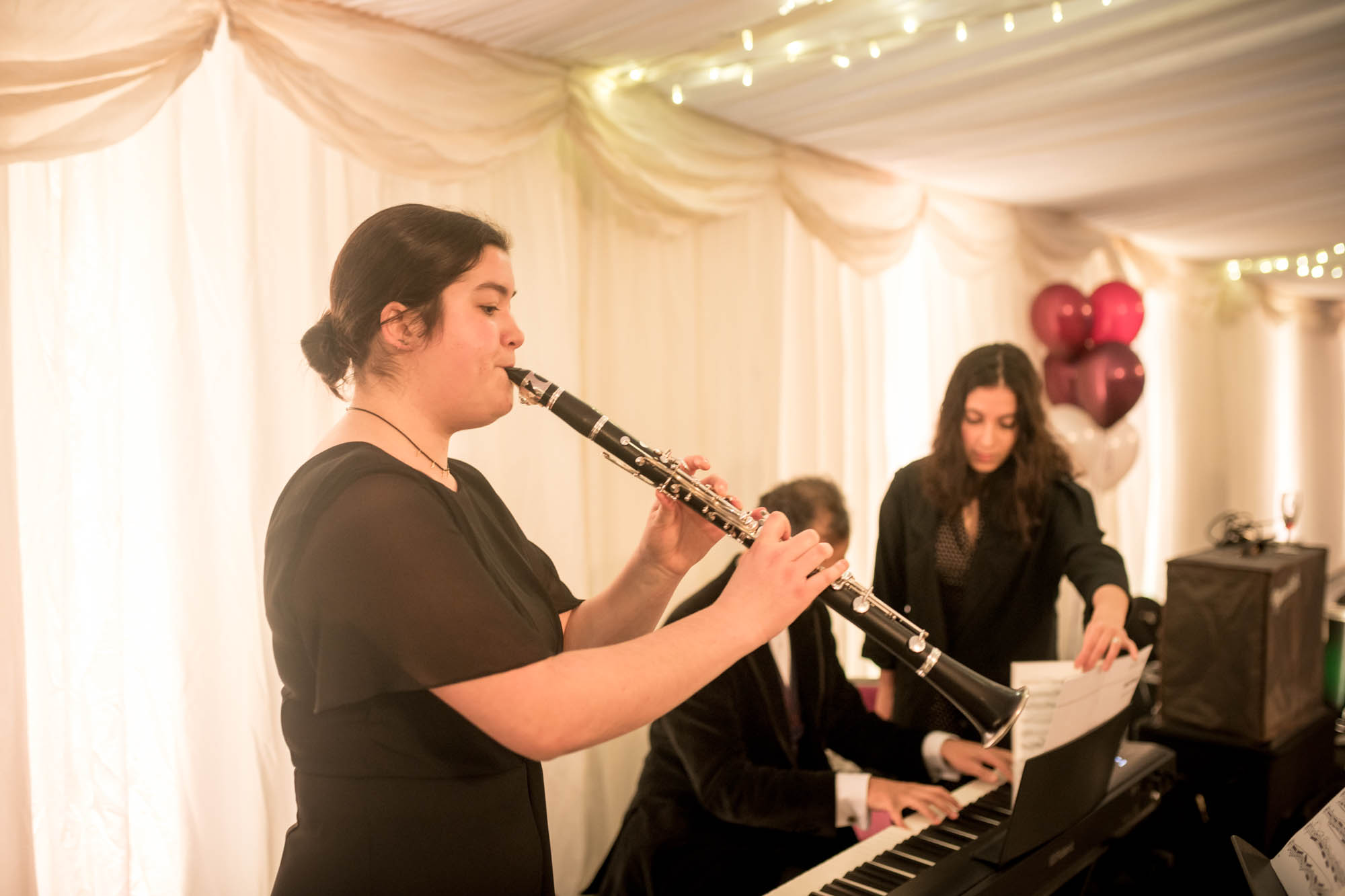 Musicians performing at the party