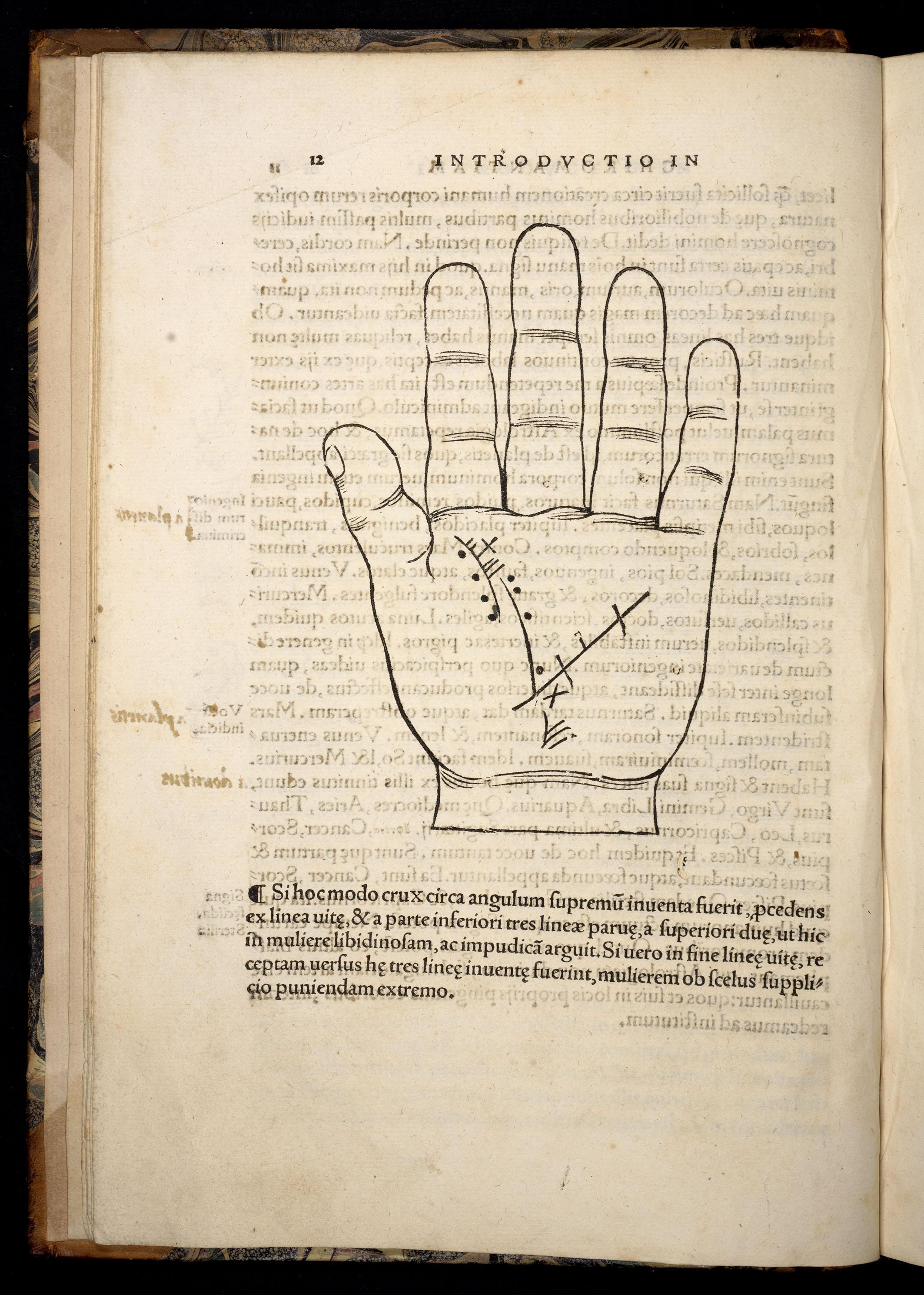 BT3.250.13, p.12, Johannes Indagine's Chiromantia, 1531