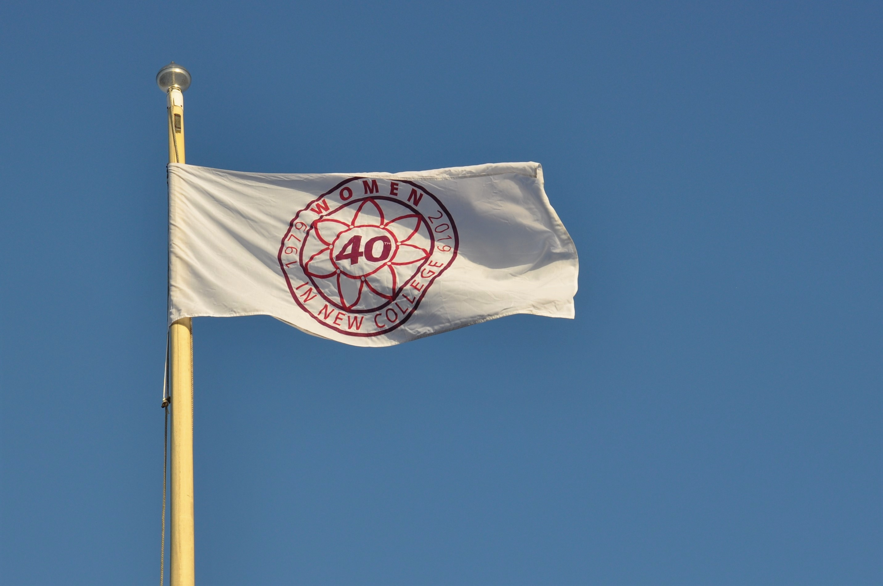 40th Anniversary of Women Flag