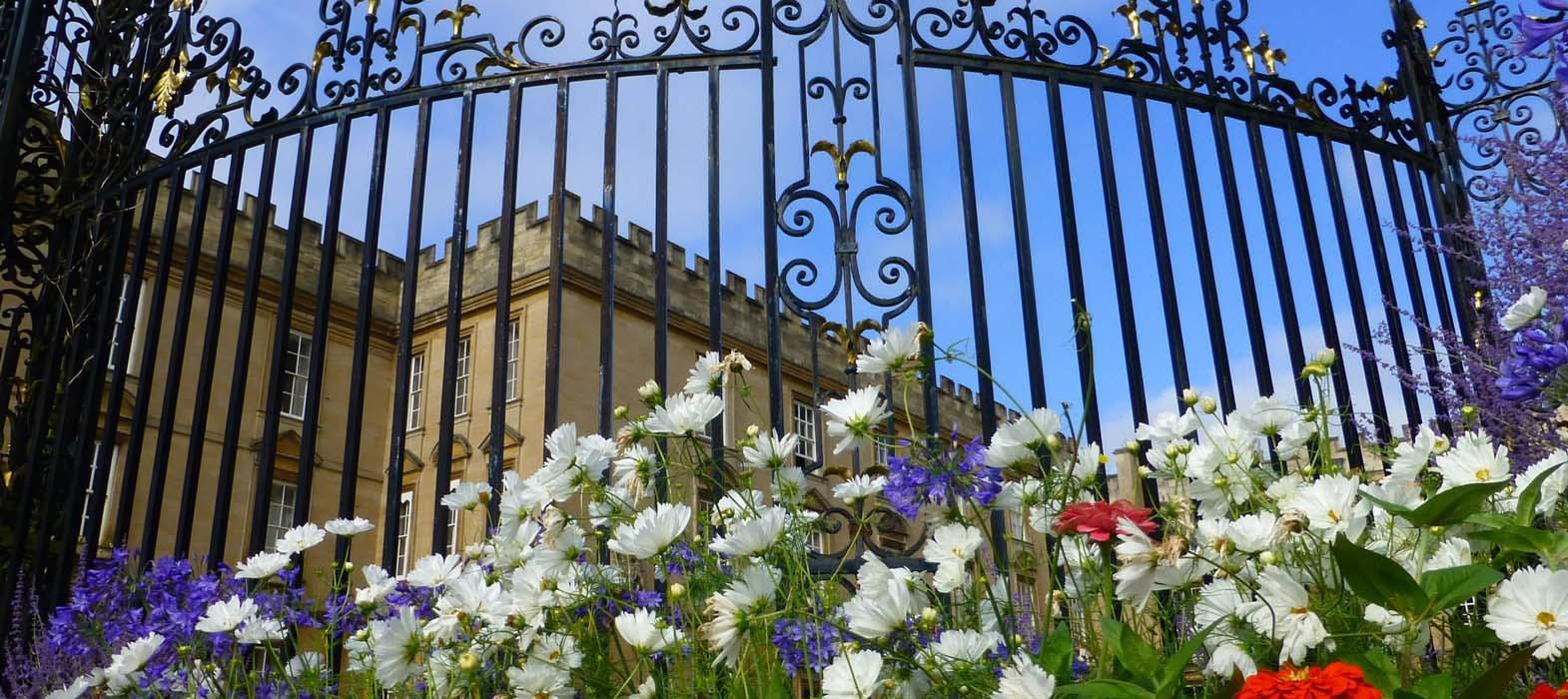 Summer flowers and the Gates