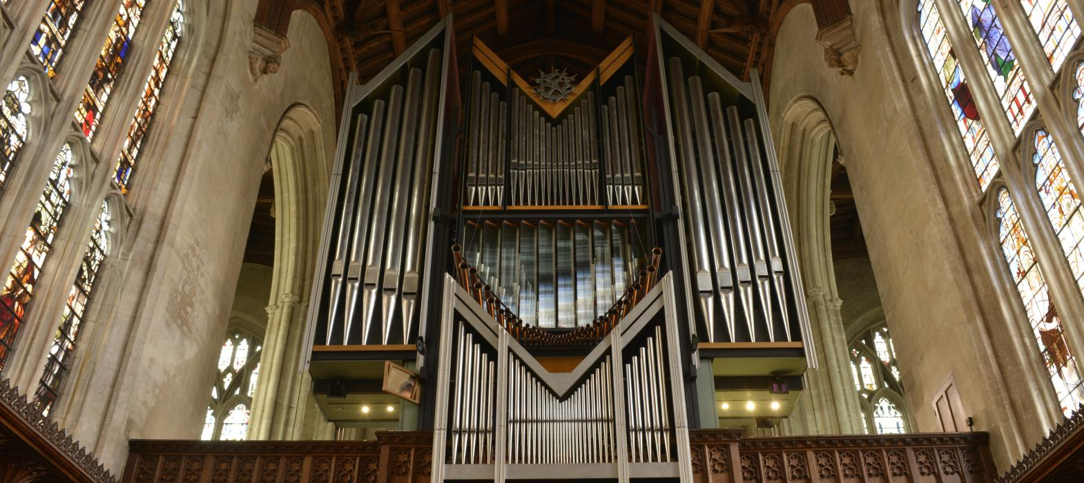 Photo of New College Organ (East side)